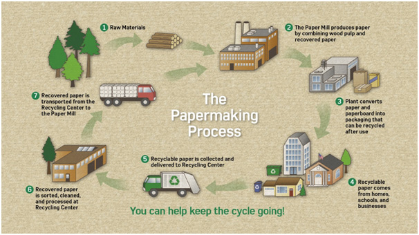 The Papermaking Process
